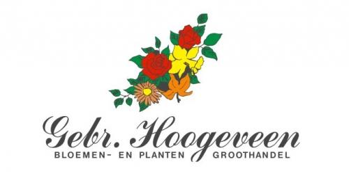 gebroeders Hoogeveen